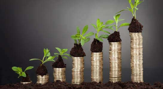 Saplings on stack of coins representing growth against black background